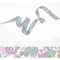 Biais Betsy Céladon coloris K x 50cm
