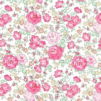 Liberty Felicité Pink 20 x 137 cm