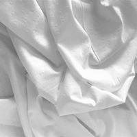 Jersey plumetis blanc 20 x 150 cm
