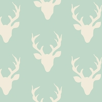 Jersey Buck Forest coloris Mint 20 x 150 cm
