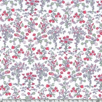 Liberty Devon Dance rose coloris B 20 x 137 cm