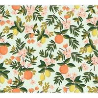 Tissu Rifle Paper Primavera oranges et citrons fond menthe clair 20 x 110 cm