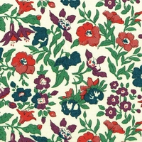 Liberty Organic Tana Lawn™ Mamie pétrole coloris C 20 x 137 cm