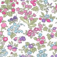 Liberty Organic Tana Lawn™ Nancy Ann rose coloris A 20 x 137 cm