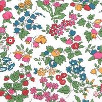 Liberty Organic Tana Lawn™ Nancy Ann fruits des bois coloris B 20 x 137 cm