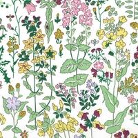 Liberty Organic Tana Lawn™ Field Flowers vert coloris A 20 x 137 cm