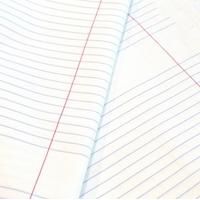 Tissu Notebook / cahier d'écolier américain 20x150 cm