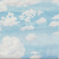 Tissu ciel, nuages 20 x 110 cm