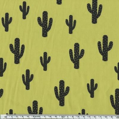 cactus fenouil
