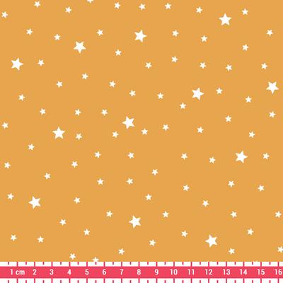 premiere_etoile_motif_classique_ananas_16x16