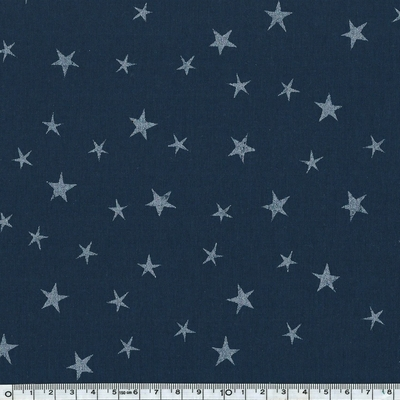 constellation marine