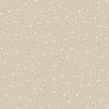 premiere_etoile_motif_classique_meringue_50x50