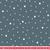 premiere_etoile_motif_classique_bleu_canard_16x16