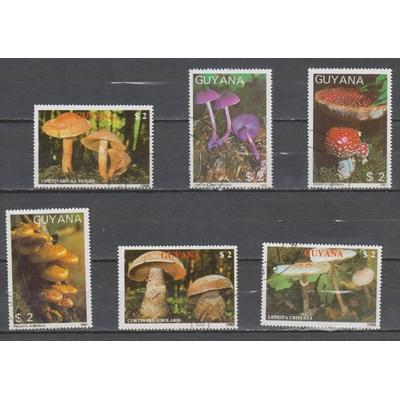 Guyane - Sélection de timbres champignons