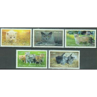 Chats du monde - Territoire Autonome d'Océanie