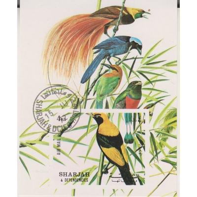 Sharjah - Oiseaux exotiques - Feuillet non dentelé