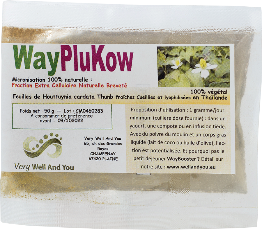 WayPlukow