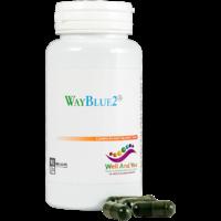 WayBlue2