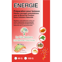 Programme ENERGIE