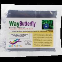 WayButterfly