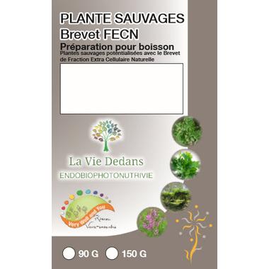 plantes sauvages fecn