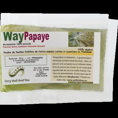 WayPapaye