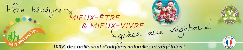 Bannière_eboutique_noel