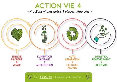ACTION VIE 4