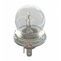 14-196 Ampoule De Phare H4 P45T