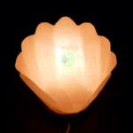 lampe de sel coquillage