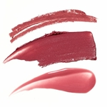 jane iredale lip kit pinck smooch touche