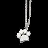 Silver_rgent-couleur-or-chien-chat-collier-pou_variants-1-removebg-preview