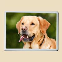 Photo porcelaine Rectangle pour Animaux