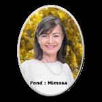 Photo-porcelaine-funéraire-ovale-Couleur-BB-P03-Mimosa-F-min