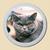 médaillon porcelaine photo chat