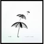 parapluiesc6newcadrec6