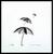 dessin-encre-de-chine-noire-les-parapluies-s-envolent-peinture-unique-peintre-ellhea-galerie-art-style-deco