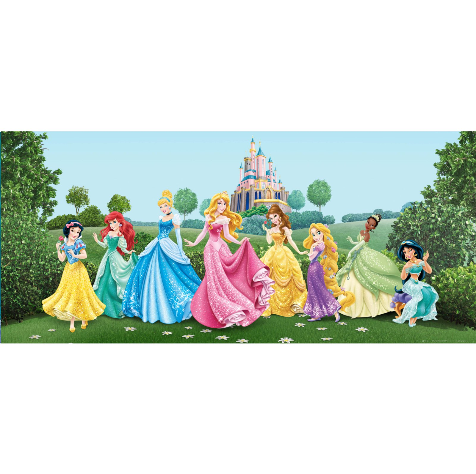 poster g ant disney princesse horizontal papier peint. Black Bedroom Furniture Sets. Home Design Ideas