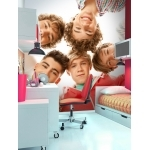"ONE DIRECTION - Poster-Papier peint XXL -270 x 253 cm - "" Circle """