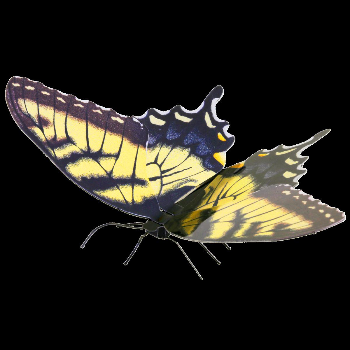 0001292_tiger-swallowtail_1200