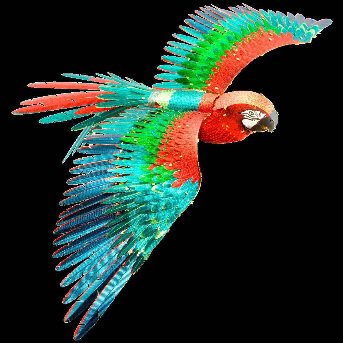 0002808_premium-series-parrot_1200
