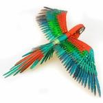 0002806_premium-series-parrot