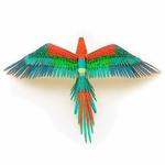 0002804_premium-series-parrot