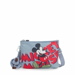 MAY MICKEY GRIS 1