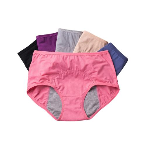 Culottes menstruelles Taille Haute | Lot de 3