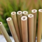 Pailles en bambou écologique