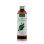 huile calophylle inophyle bio