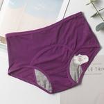 Femmes-sous-v-tements-culotte-menstruelle-tanche-Incontinence-Sexy-pantalon-p-riode-preuve-taille-haute-coton