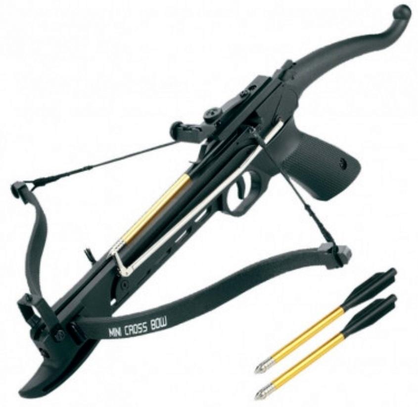 Arbalète pistolet COBRA 80 lbs + 3 flèches