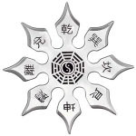 Ying_Yang_Eight_Point_Throwing_Star